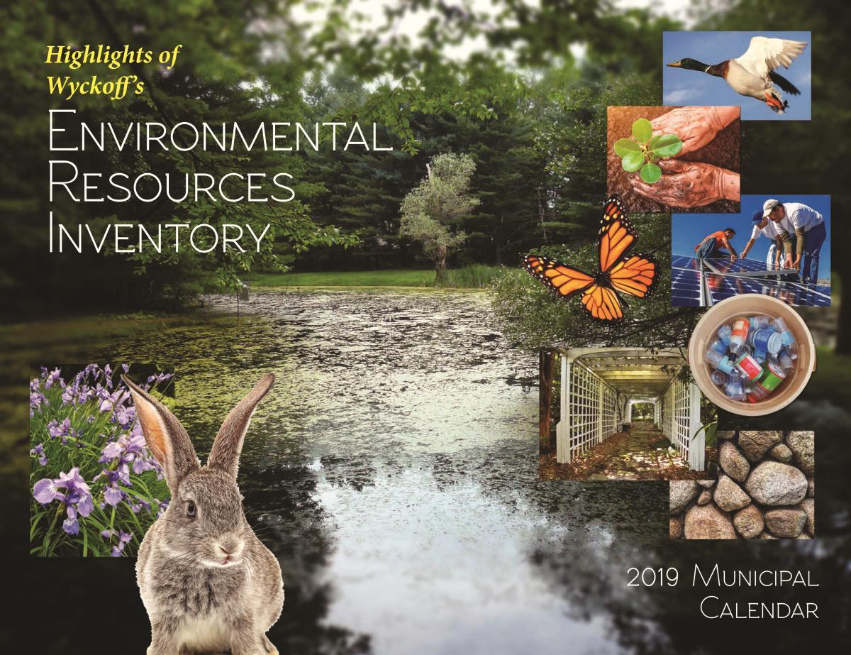 Cover of 2019 Municipal Calendar