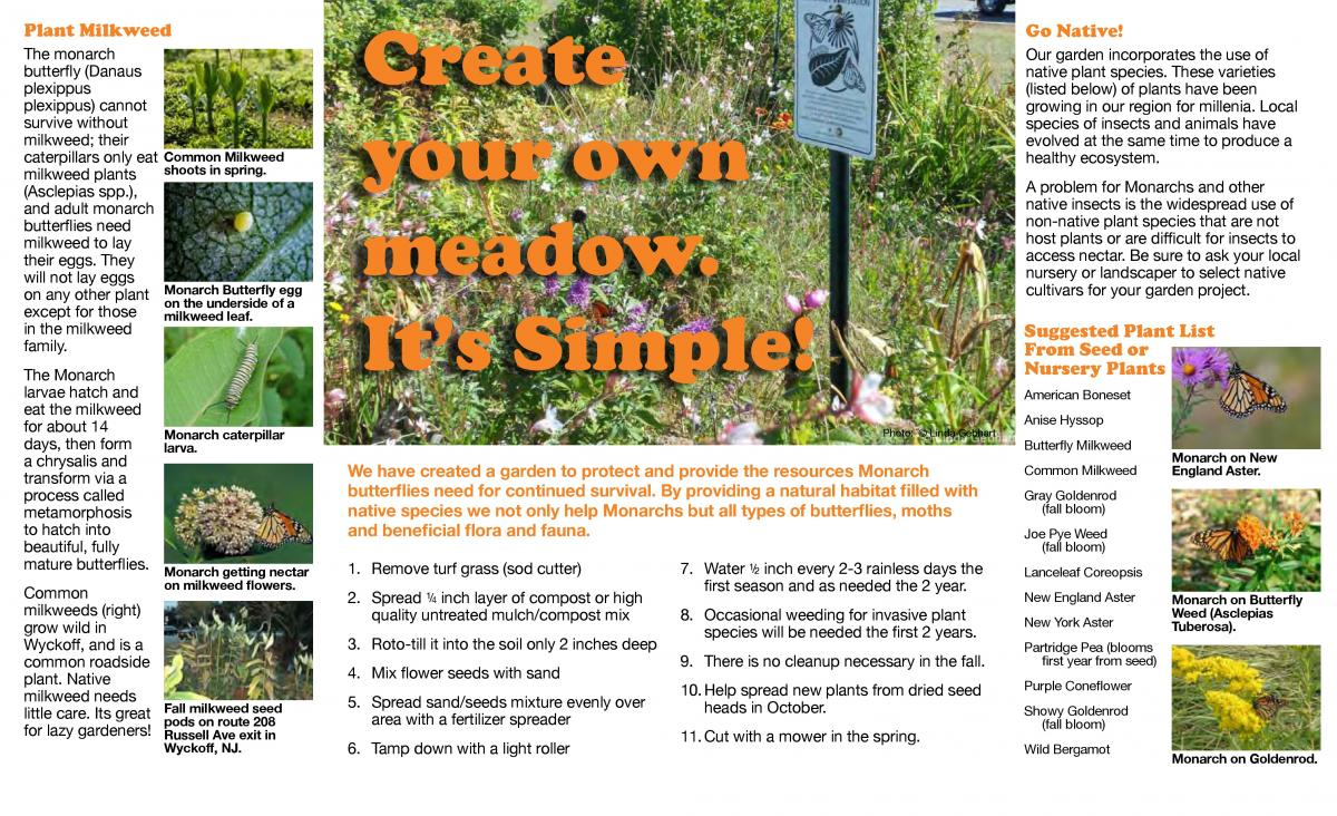 Butterfly Brochure page 2