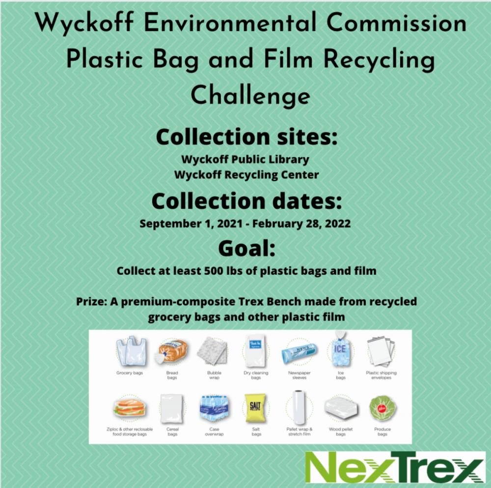 Trex challenge